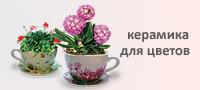 Керамика для цветов